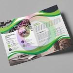 11_Bifold-Brochure_Image-1.jpg