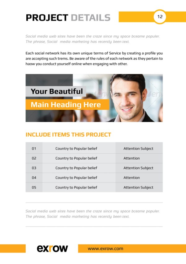 Bravo Elegant Professional Business Flyer Template
