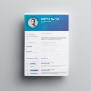 Hera Premium Professional Resume Template