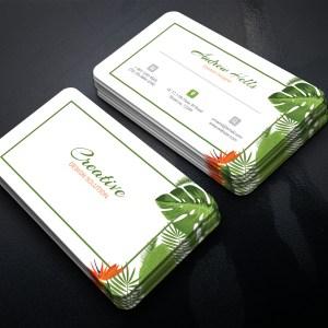 Medusa Professional Corporate Business Card Template