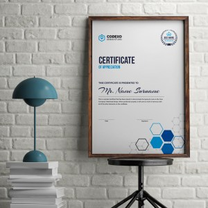 Top Rated Professional Portrait Certificate Template