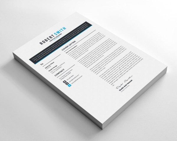Minimalist Sleek CV Design
