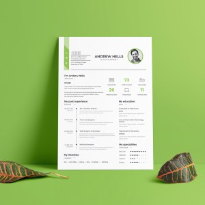 A4 Elegant Resume Template