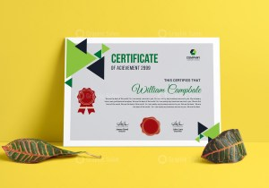 Achievement Award Certificate Template