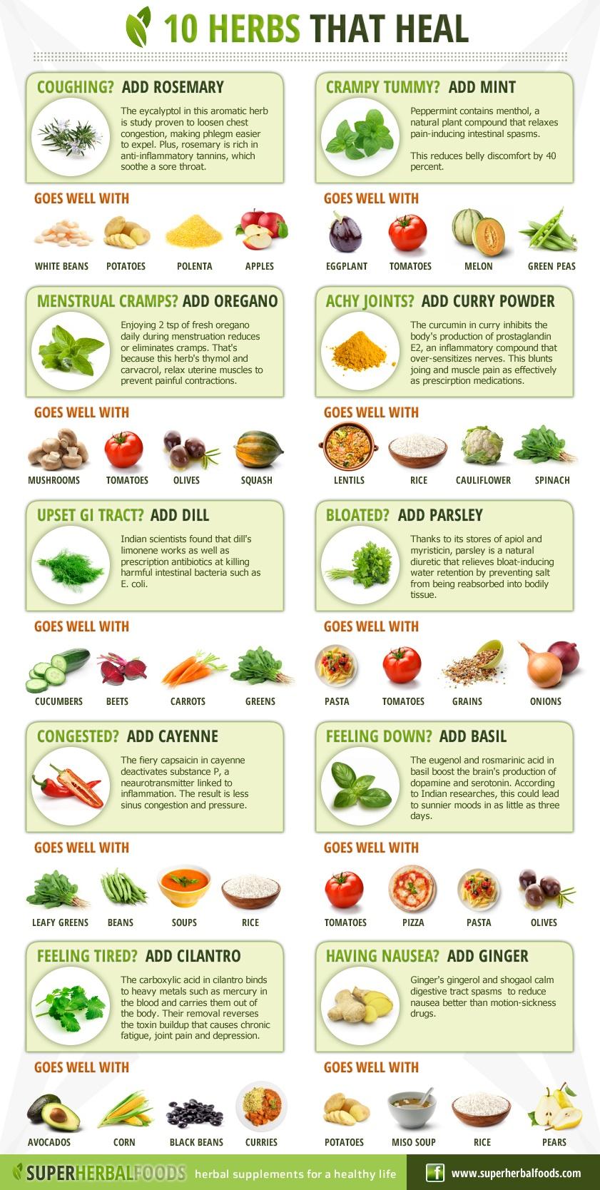 10 Powerful Healing Herbs