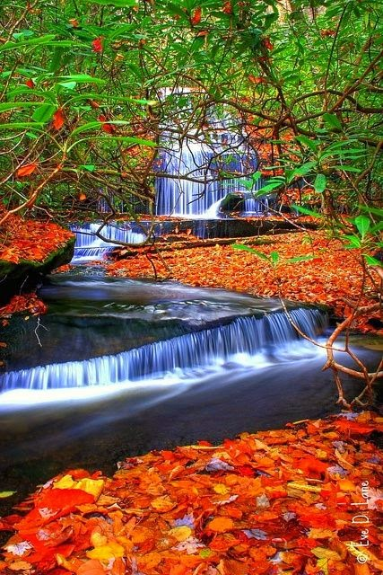 15 Of The Most Picturesque Waterfalls In The World_011