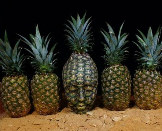 Body Paintings That Camouflaged Perfectly_009