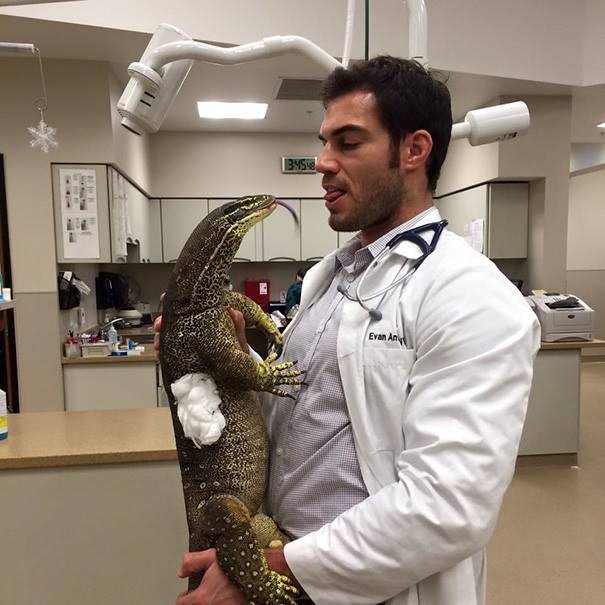 These Pictures Will Make You Want To Work At An Animal Hospital16