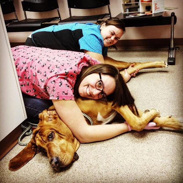 These Pictures Will Make You Want To Work At An Animal Hospital32