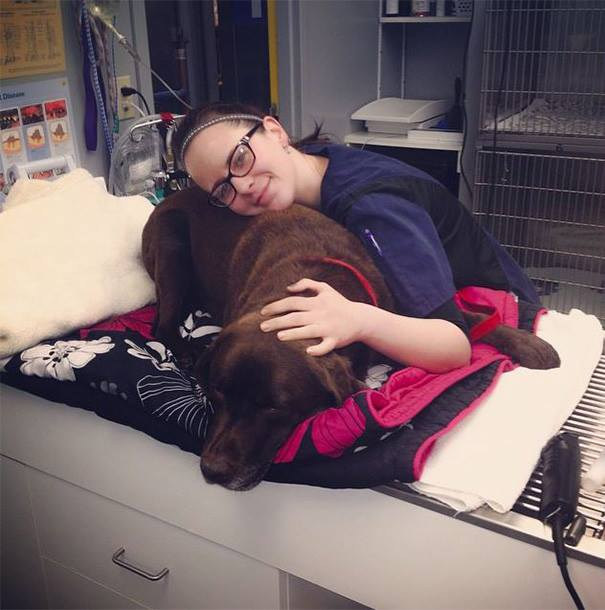These Pictures Will Make You Want To Work At An Animal Hospital34