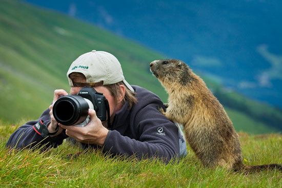Beautiful Images That Prove Nature Is The Best Gift  (13)