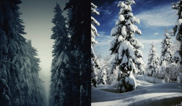 20 Picturesque Winter Landscapes That'll Give You The Chills