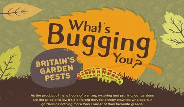 Top 10 Garden Pests and How To Deal With Them - Infographic