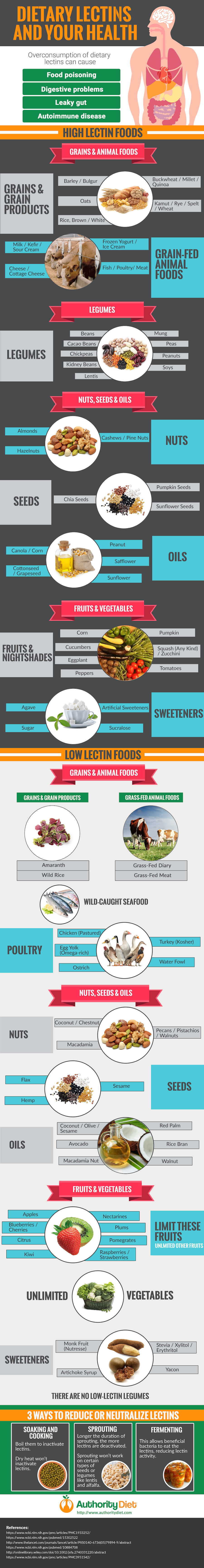 What Is Dietary Lectins? Everything You Should Know - Infographic