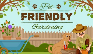 How to Create a Pet Friendly Garden - Infographic