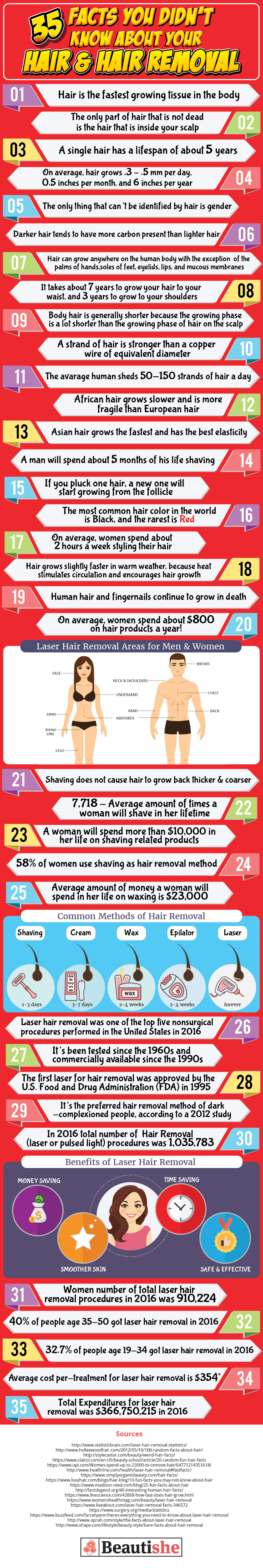 All You Want to Know About Hair and Hair Removal - Infographic
