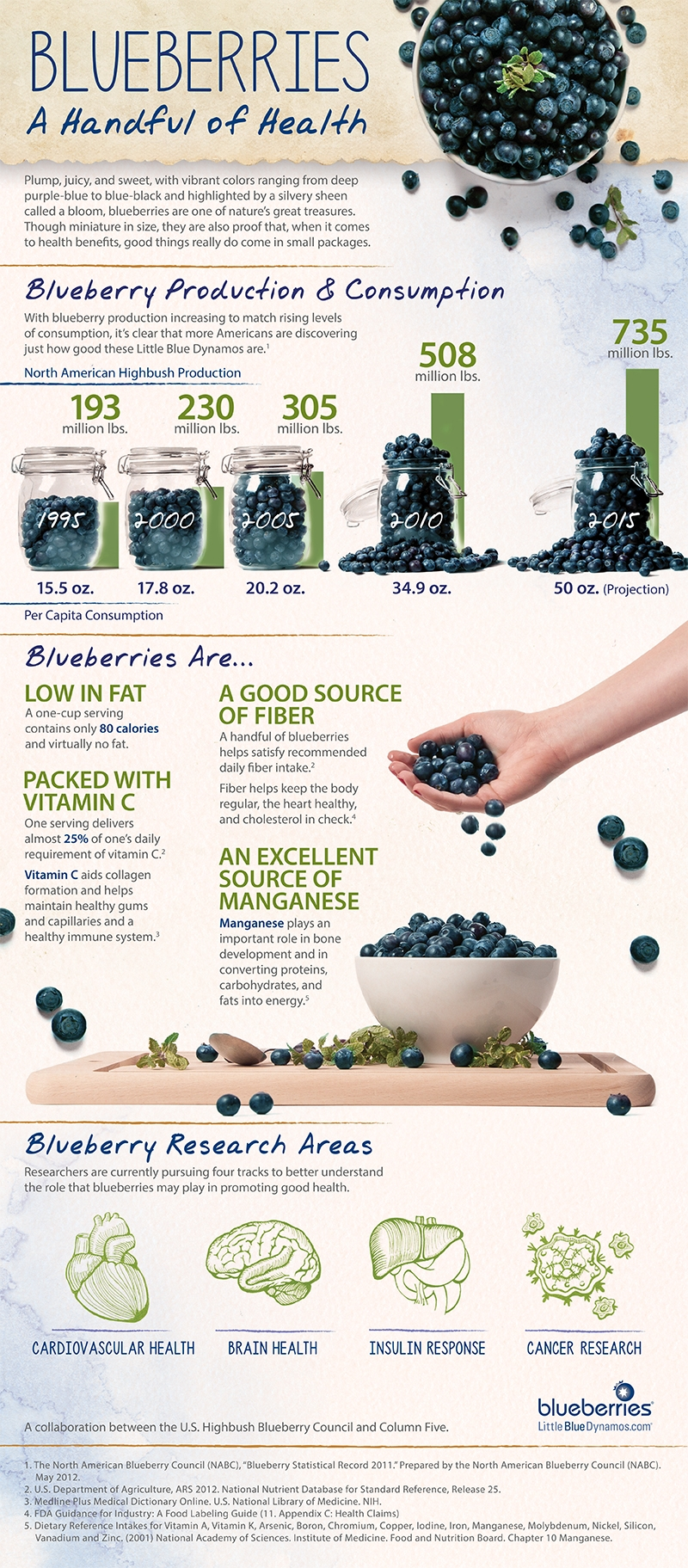 Blueberries: Delicious, Juicy Pops of Good Health - Infographic