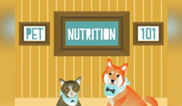 A Well-Fed Pet is a Happy Pet: Pet Nutrition Chart - Infographic