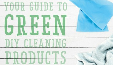 DIY Home-Cleaning Products: The Non-Toxic, Healthier, Safer Option - Infographic
