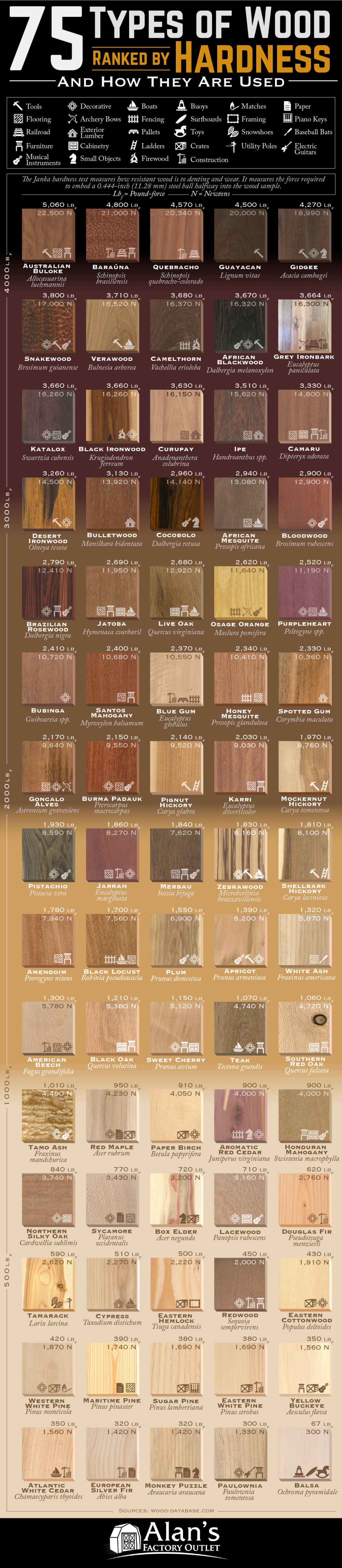 Ranking of 75 Types of Wood According to the Janka Hardness Test - Infographic