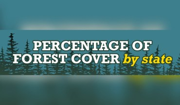 The Great Open Outdoors: State-Wise Forest Cover in USA - Infographic