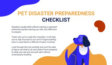 How to Keep Your Pets Safe When Disaster Strikes - Infographic