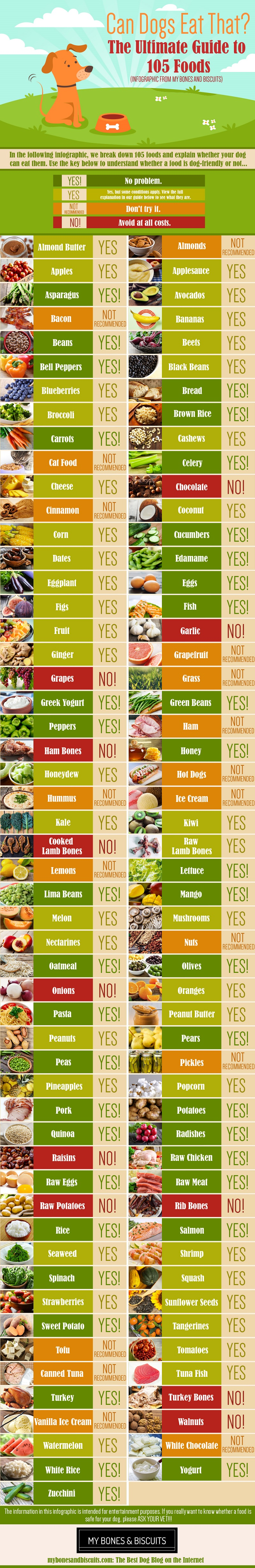 Comprehensive Ready Reckoner of 105 Dog-Friendly and Dog-Unfriendly Foods - Infographic