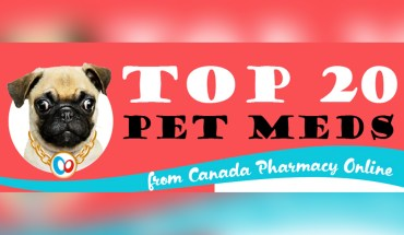 Canada Pharmacy Online: Your One-Stop Shop for the Best Pet Meds - Infographic
