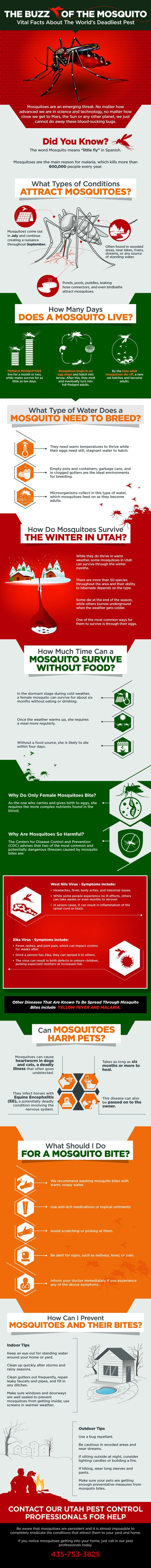 Pest Alert: Important Must Know Facts About Mosquitoes - Infographic
