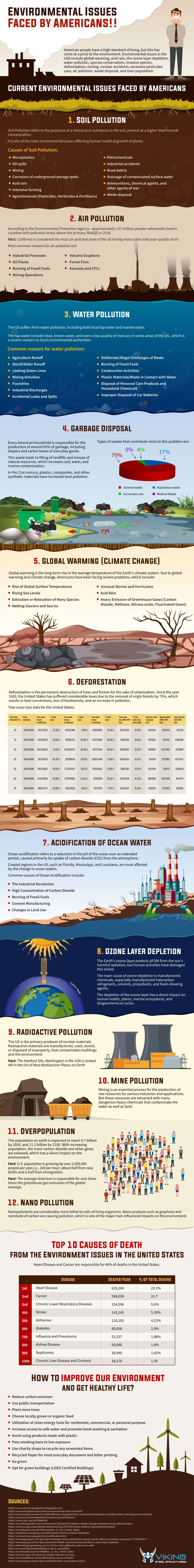 The Price of Progress: America's Worrying Environmental Issues - Infographic