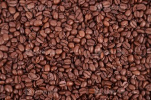 Quality roasted coffee beans stock image