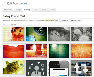 Mixfolio WordPress theme post formats admin ui