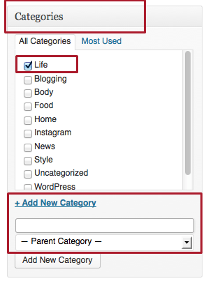 Categories on the Post edit page