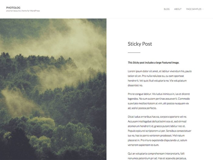 Photolog wordpress photography theme