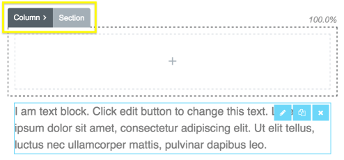 The Column and Section customization tabs.