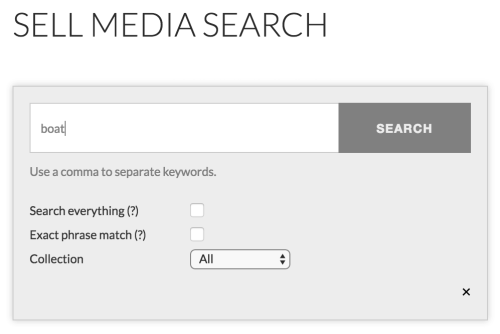 The Sell Media search bar.