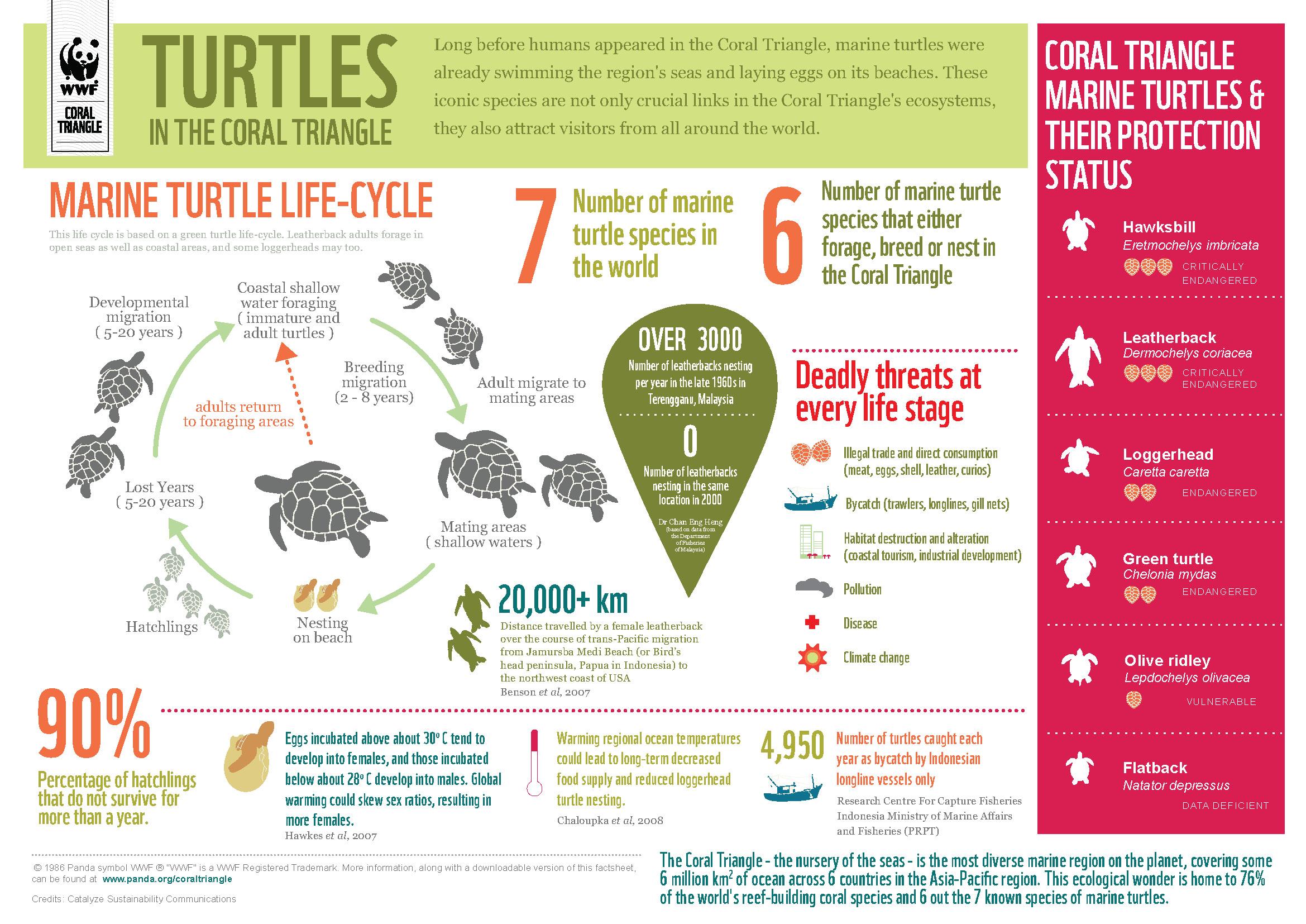 Top 10 Biodiversity Infographics