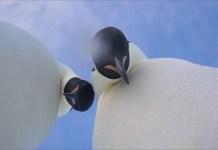 penguins take a selfie in Antarctica