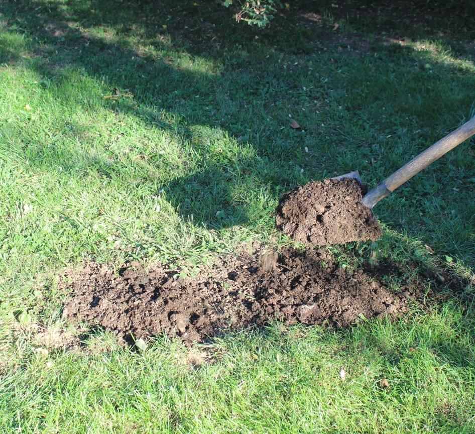 Rasen reparieren - frische Erde