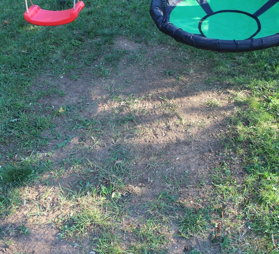 Rasen reparieren - Kahle Rasenstelle