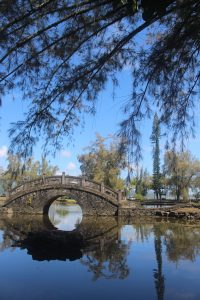 A photo of a arched stone bridge over water; in the foreground is a pine branch and in the background is blue sky. Photo by Lindsay Ryan.