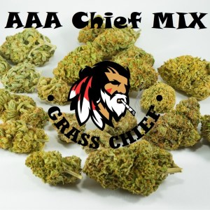 AAA-Chief-MIX-Grass-Chief