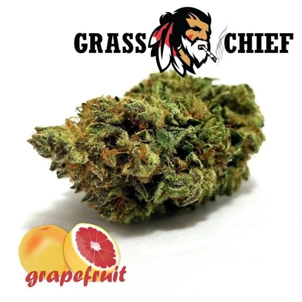 Grapefruit - AAAA+ on Grass Chief