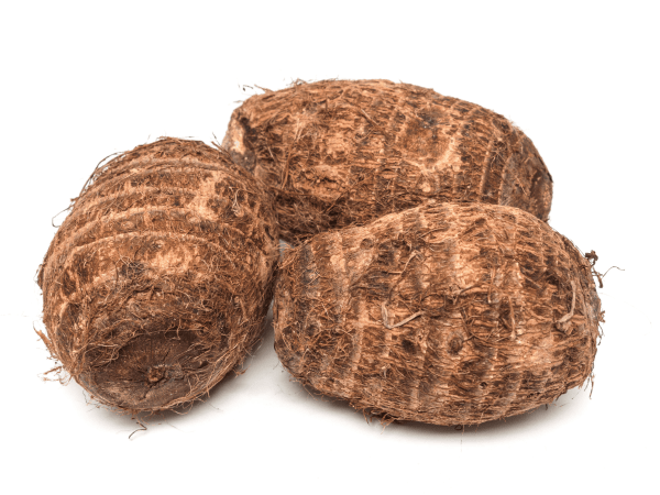 Afrikansiches Wurzelgemüse, Taro
