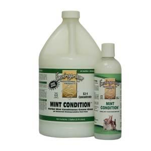 Mint Conditioner