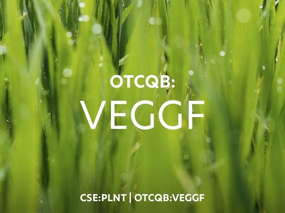 Cannot view this image? Visit: https://i1.wp.com/grassnews.net/wp-content/uploads/2020/09/better-plant-sciences-announces-otc-ticker-symbol-change-to-veggf.jpg?w=740&ssl=1