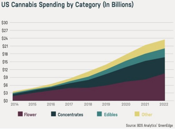Cannot view this image? Visit: https://i1.wp.com/grassnews.net/wp-content/uploads/2021/04/the-rise-of-specialization-in-cannabis-and-how-to-invest-1.jpg?w=696&ssl=1