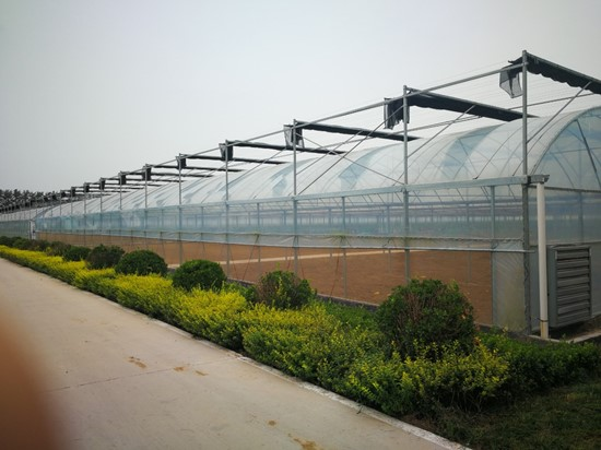 Cannot view this image? Visit: https://i1.wp.com/grassnews.net/wp-content/uploads/2021/09/agtechs-city-farm-industries-joint-venture-announces-its-first-multi-span-greenhouses-arrive-from-china-1.jpg?w=696&ssl=1