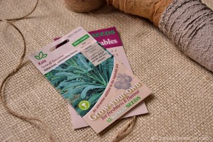 Sowing Veg in the Summer for an Autumn/Winter Harvest