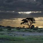 African landscape sunset